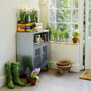 indoor tin can gardens